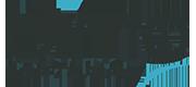Logo Dimo software