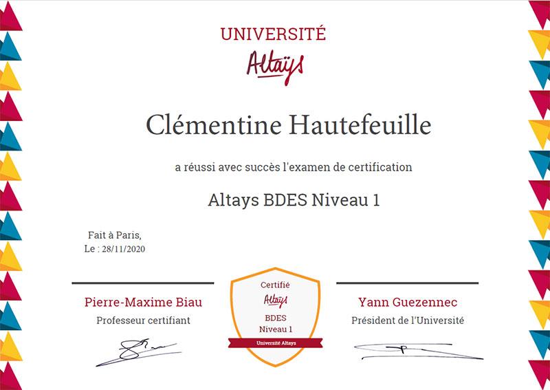 Altays Université